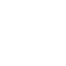 Wells Fargo_White